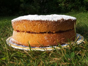 Norwich_Cake_in_garden__2005_ref_P2619